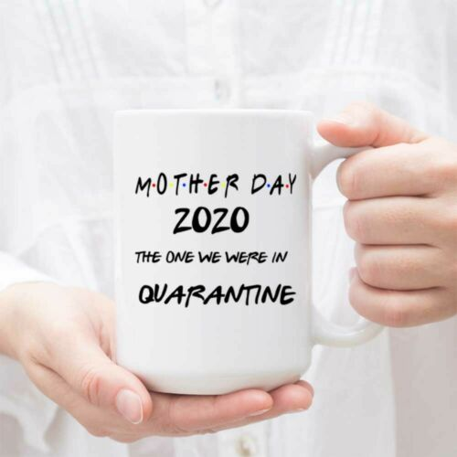 Funny Mom Coffee Mug Tea Cup Gift Mother Day 2020 The One We Were IN Quarantine