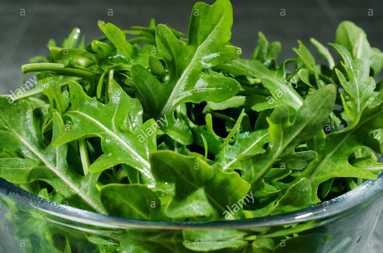 Rocket (Runway) Seeds 300+ seeds :) Instructions Inc. Salad 🥗 Sandwiches xx