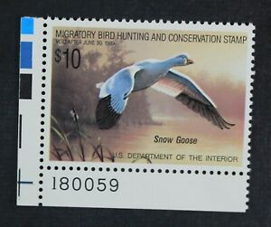 CKStamps-US-Federal-Duck-Stamps-Collection-Scott-RW55-10-Mint-NH-OG