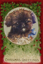 Pekingese Puppy Dog by Florence E Valter 1920's LARGE New Christmas Note Cards
