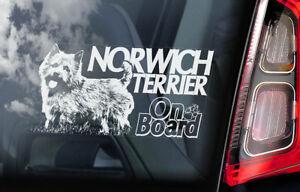 Norwich-Terrier-On-Board-Auto-Finestrino-Adesivo-Cane-Firmare-Regalo-Arte