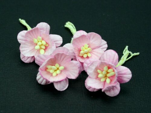 # 10 Pale Pink Cherry Blossoms 2.5cm on stems by Green Tara