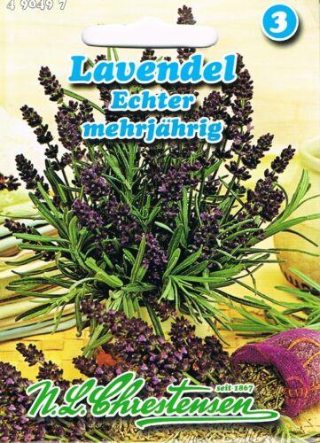 490497 Echter Lavendel  mehrjährig Kräuter Saatgut Samen