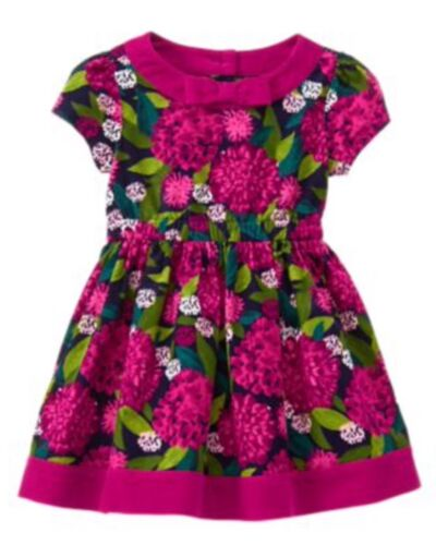 Nwt Gymboree Plum Pony Flower Corduroy Dress Floral Girls 12-18 M