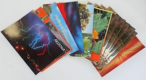 1-dozen-assorted-Arizona-Post-Cards-pictures-show-included-cards-assortment-7
