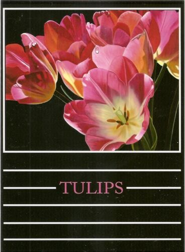"/""PINK TULIPS/"" Blank Notecard art by James McGulpin!"