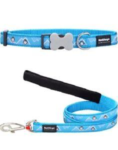 Red-Dingo-PENGUIN-Design-Collar-Lead-TURQUOISE-Dog-Puppy-Sizes-XS-LG