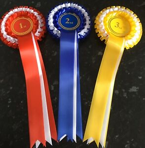 1st 6th Place Rosettes Dog show rosettes two tier award rosettes F2