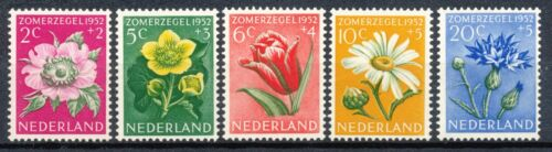NETHERLANDS CULTURAL & SOCIAL RELIEF FUND FLOWERS 1952 MNH Hk416c