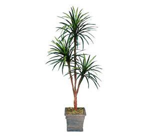 6' Artificial Yucca Tripled Palm Tree with No Pot Silk Plant Bush Decor New
