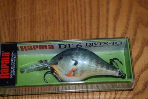 NIP Bluegill Rapala DT-6 DT Series Crankbait Fishing Lure