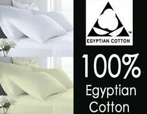 Qualita-Hotel-400TC-100-Cotone-Egiziano-Lenzuolo-amp-lenzuolo-federe-per-cuscini