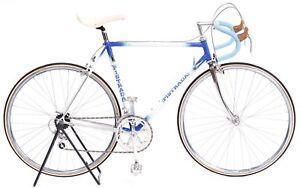 Classic-Pistrada-Road-Bicycle-53-cm-Shimano-105-Golden-Arrow-Reynolds-501-3TTT
