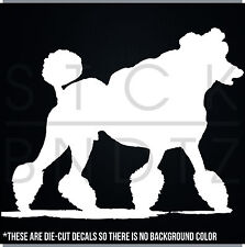 PUDEL DOG TOY LADY USA CUTE FUNNY DECAL STICKER MACBOOK CAR WINDOW MOTORCYCLE