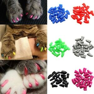 100pcs-Cat-Pet-Nail-Caps-Soft-Claw-Adhesive-Covers-Dog-Paws-Protector-Kitten-Toy