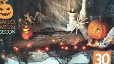 Halloween Light Up Gauze Garland 30 orange  LED Lights/Prop/Party