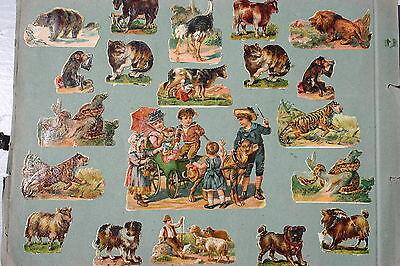 Kompetent 7419 33 Alte Oblaten Glanzbilder Chromos Tiere Katze Und Affe Kinder Tiger Bär Ausgezeichnet Im Kisseneffekt Papier & Dokumente