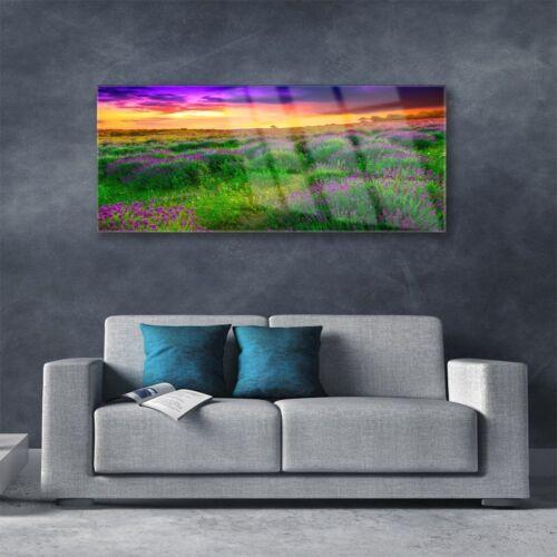 Acrylglasbilder Wandbilder Druck 125x50 Wiese Natur