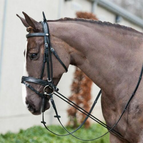 Elastic Horse Riding Bridle Halters Racing Equipment Equestrian Training Tool