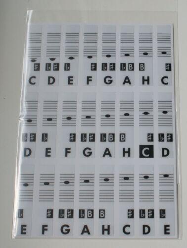 Piano Klavier Keyboard Noten Aufkleber Sticker C-D-E-F-G-A-H