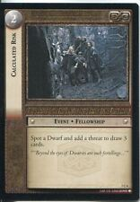 Lord Of The Rings CCG Card RotK 7.C4 Calculated Risk
