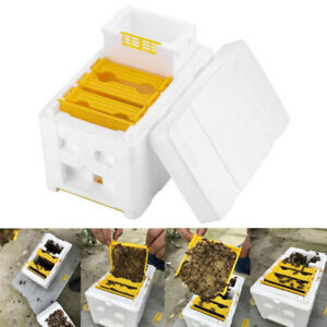Auto-Honey-Beehive-Frames-Beekeeping-Kit-Bee-Hive-King-Box-Pollination-BoxPDH-YT