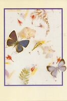 Butterfly And Flower Note Cards - By Waldorf Image Arts- Set Of 14