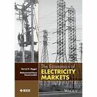 The Economics of Electricity Markets by Darryl R. Biggar, Mohammad Hesamzadeh (Hardback, 2014)