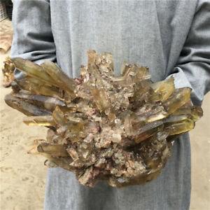 25-52LB-Natural-smokey-Quartz-Cluster-Mineral-Crystal-Specimen-Healing-GG4314-YH