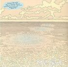 Mutual Benefit Skip a Sinking Stone Ltd Coloured LP & Mp3 in Stock