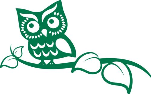 Owl On Branch Bird Animal Owlet Car Truck Laptop Window Wall Vinyl Decal Sticker