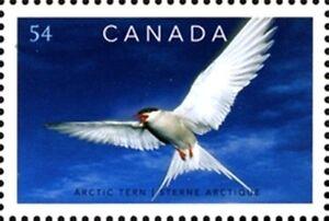 Canada-2327-ARCTIC-TERN-Brand-New-2009-Fresh-Pristine-Gum
