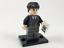 LEGO 71022 Harry Potter Figuren Fantastic Beasts  aus 22 Minifiguren aussuchen