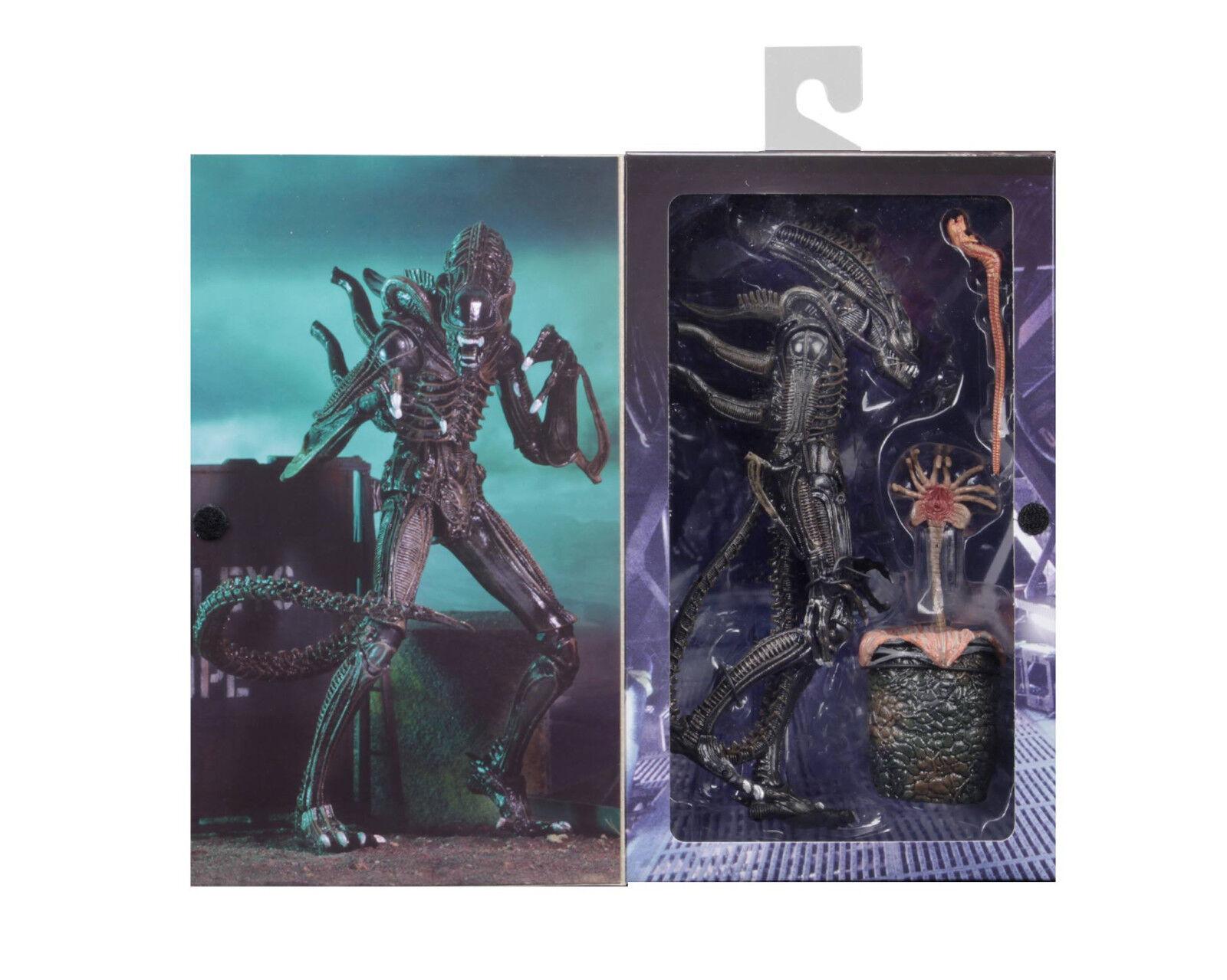 Aliens (1986) XENOMORPH WARRIOR (BROWN) Ultimate 7  Scale Action Figure NECA