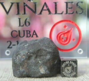 Vinales-Meteorite-24-5-gram-individual-from-Cuba-L6-Chondrite-Shock-level-3