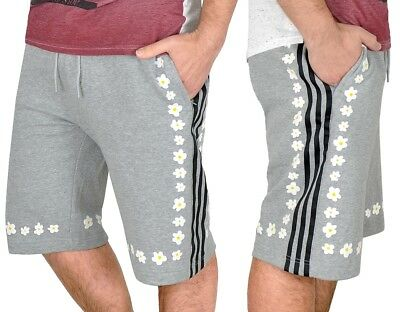 pantalon adidas pharrell williams