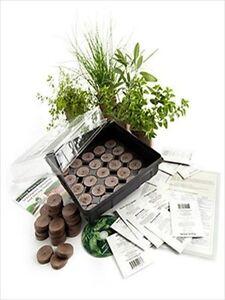 Indoor cooking culinary herb garden growing kit gardening gift grow spices ebay - Indoor herb garden starter kit ...