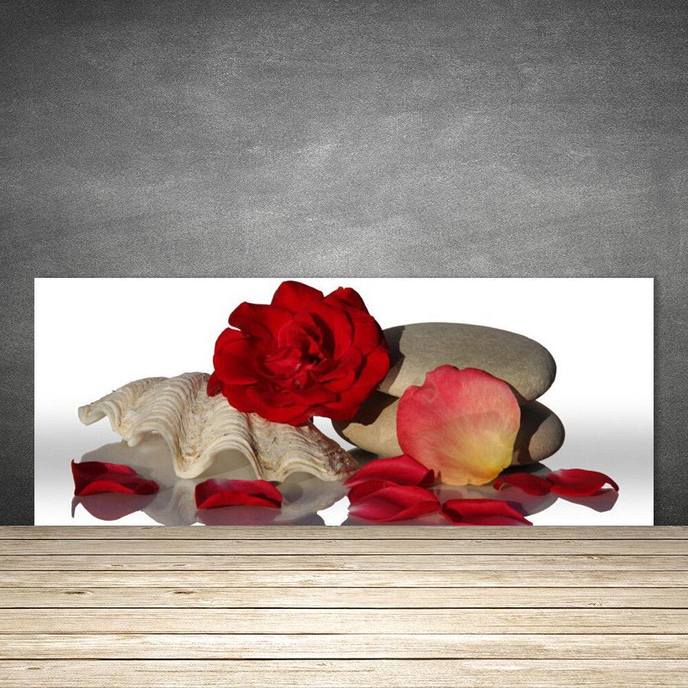 Crédence de cuisine en verre Panneau 125x50 Art Rose Coquille