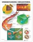 Understanding Cholesterol Anatomical Chart by Anatomical Chart Co. (Fold-out book or chart, 2001)