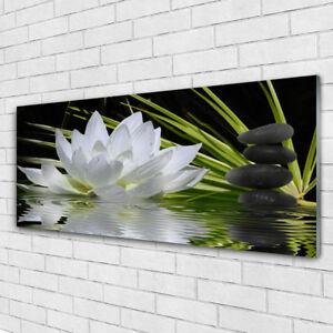 glasbilder wandbild druck auf glas 125x50 blume steine wasser pflanzen ebay. Black Bedroom Furniture Sets. Home Design Ideas