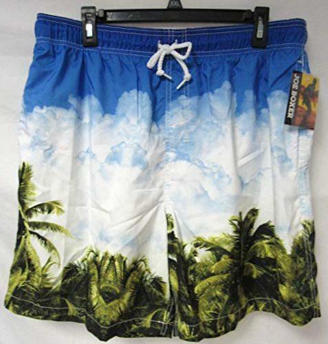 Joe Boxer Men/'s Size L or 2XL Palm Leaves Cloud Board Shorts Swim Trunks C1 725