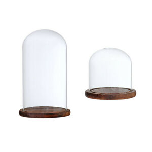 12x12-amp-12x20cm-Decorative-Clear-Glass-Display-Dome-Cloche-Bell-Jar