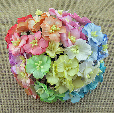PACK 10 PRETTY APPLE BLOSSOMS MIXED FLOWERS GREAT FOR  CRAFTS-CAKES-FAVOURS