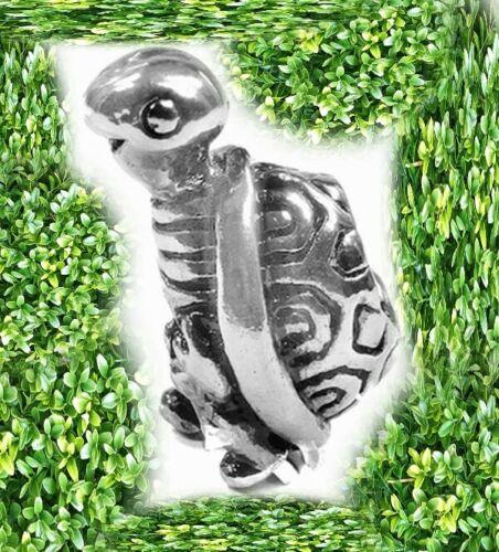 Bead tortuga Turtle osito de peluche con rosca interna para sammelarmband serpiente