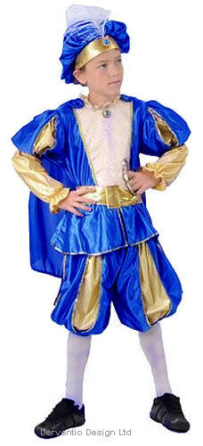 BOYS KIDS MEDIEVAL TUDOR KING PERSIA PRINCE FANCY DRESS COSTUME OUTFIT 4-6-9-11