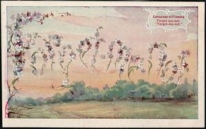 LANGUAGE-OF-FLOWERS-Forget-Me-Not-Antique-1909-Postcard-Old-Vtg-Large-Letter-562