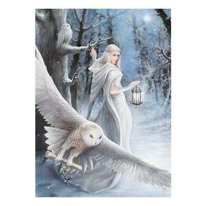 Anne-Stokes-Leinwand-Bild-Eule-Fee-Midnight-Messenger