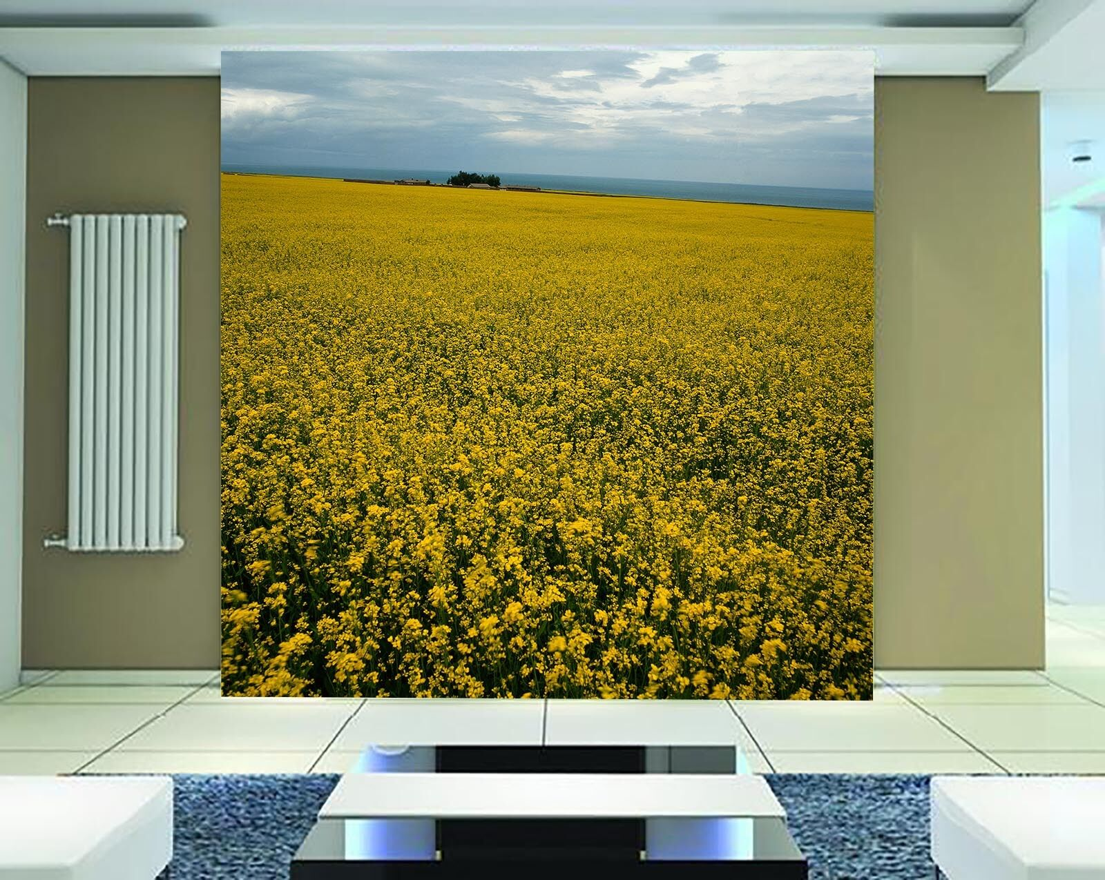 3D Bright Canola Flower Wall Paper Wall Print Decal Wall Deco Wall Indoor Murals