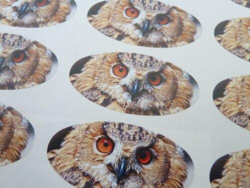 Sobres etiquetas Para Envoltorio De Regalo Con Dibujo De Búho Oval Sello etiquetas Tarjetas