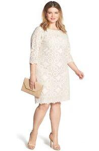 Details about Eliza J Lace Shift Dress (Plus Size) (Size 16W)